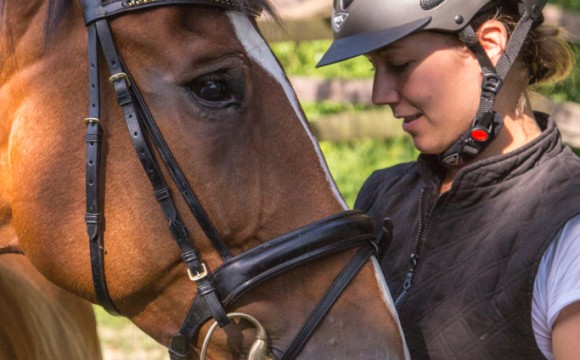 Individuelle Pferdefotografie